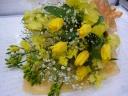 yellow~春~