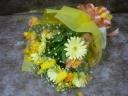 春~yellow・yellow~