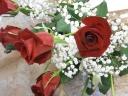 【花束】赤いバラの花束