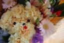 プードルの花束☆ハッピーイエロー☆