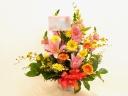 ★☆春らしい黄色とピンクですc(゚ー゚*)☆★