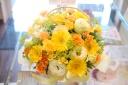 光に満ちた花