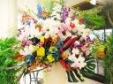 胡蝶蘭と季節のスタンド花