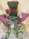 アニマルトピアリー観葉植物鉢