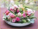 円満な微笑のお花たち
