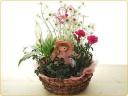 寄せ鉢とかわいいお人形♪