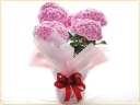 八重で、てまり咲きの紫陽花【筑紫ルビー】♪