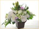 清楚な白いお花中心に♪