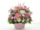 可愛いお花に囲まれて♪