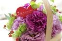 母の日 ムーンダスト「母の幸せを願う」