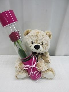 フワフワのマックス・ミニとまっかなバラのプレゼント