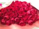 赤バラ50本の花束