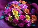 カラフルなバラ50本の花束