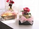 桜かおるクッキー&プリザ【クリームレッド】
