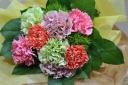 ミックスカーネーションの花束