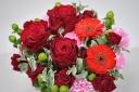 真っ赤なバラ アマダ+