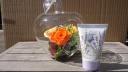 GlassApple (ORANGE・L)