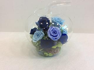 GlassApple(Blue)