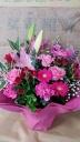 pink�����