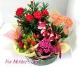 母の日の幸せ花鉢セット!当店おすすめ!