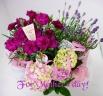 素敵な癒し系花鉢セット♪