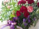 赤紫カーネ&Pミニバラ&ラベンダーセット♪