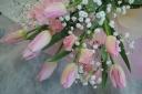 チューリップピンク 花束