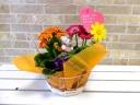 Happy flower セット