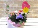Happy flowerセット