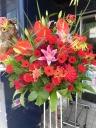 情熱の赤スタンド花
