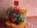 おすすめ花鉢