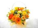 春のお花【SPRING FLOWER】